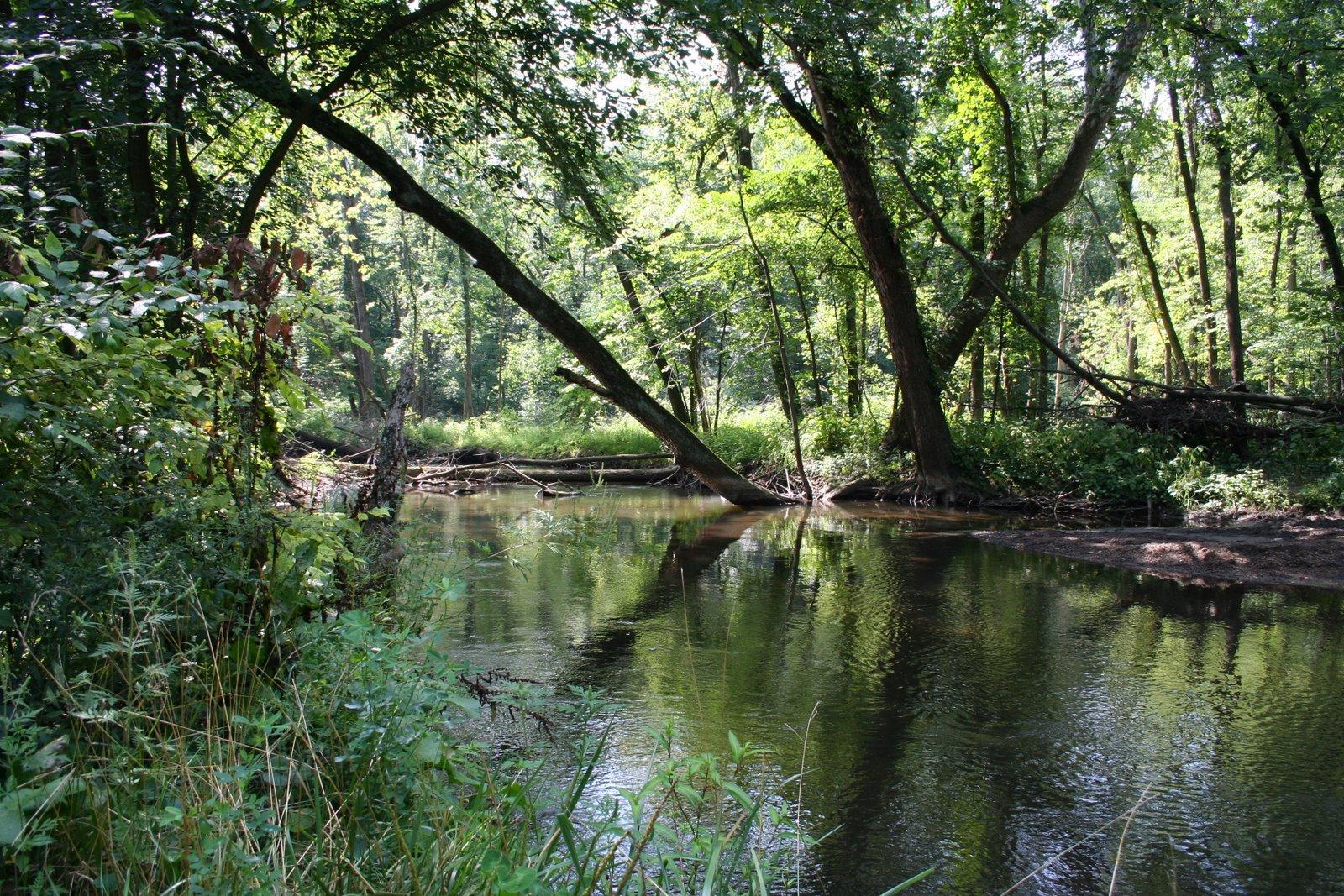 Little Elkhart River